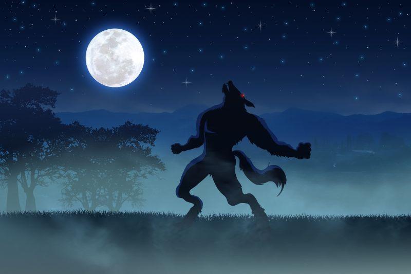 Werwölfe Vom Düsterwald! Das Beste Werwolf Spiel
