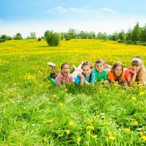 Kinder im Blumenfeld