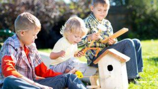 Kinderjungen spielen und bauen ein Vogelhaus, sie sitzen auf grünem Gras