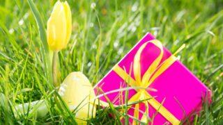 Rosa Geschenkbox mit Osterei und gelber Tulpe