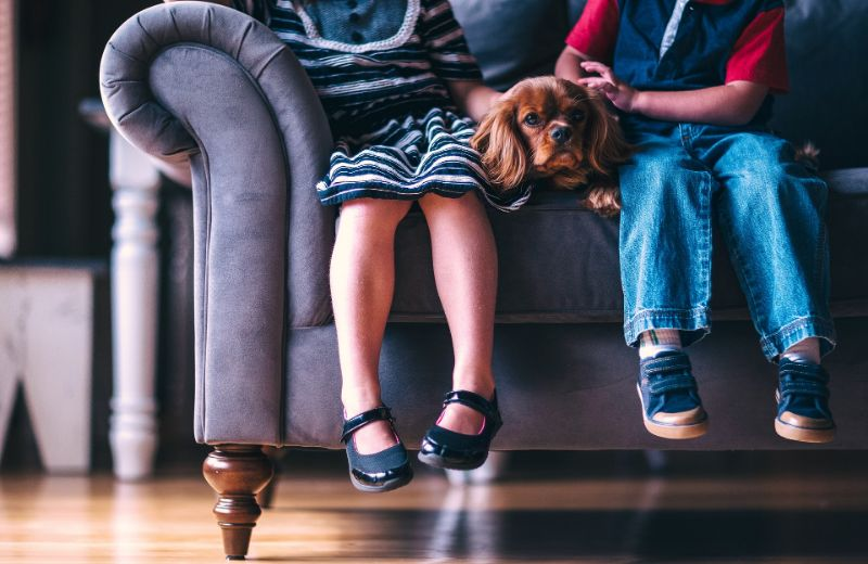 Junge-und-Madchen-sitzen-auf-einem-Sofa-mit-einem-Hund