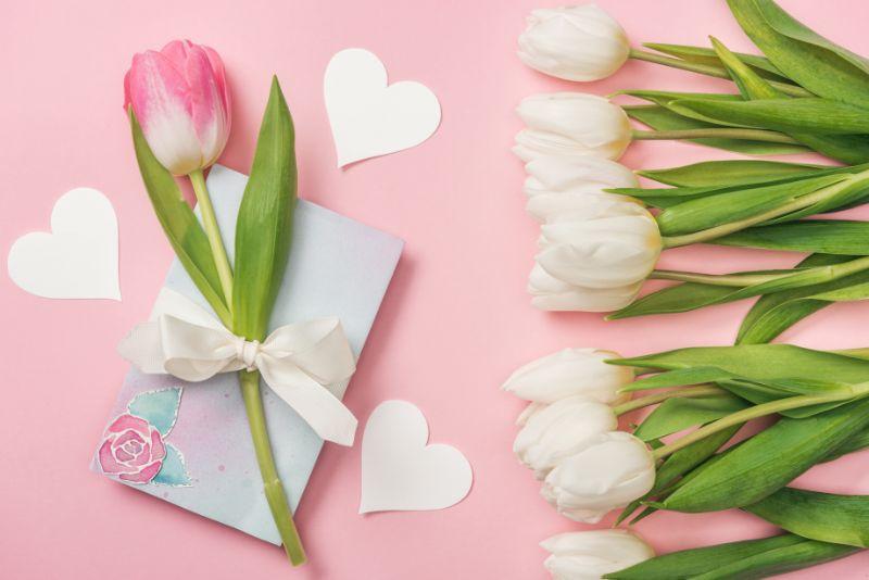 Rosa-Tulpe-mit-weiser-Schleife-auf-Gruskarte-Papierherzen-und-weisen-Tulpen-auf-rosa-Hintergrund