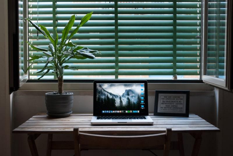 macbook-auf-einem-tisch-neben-zimmerpflanze
