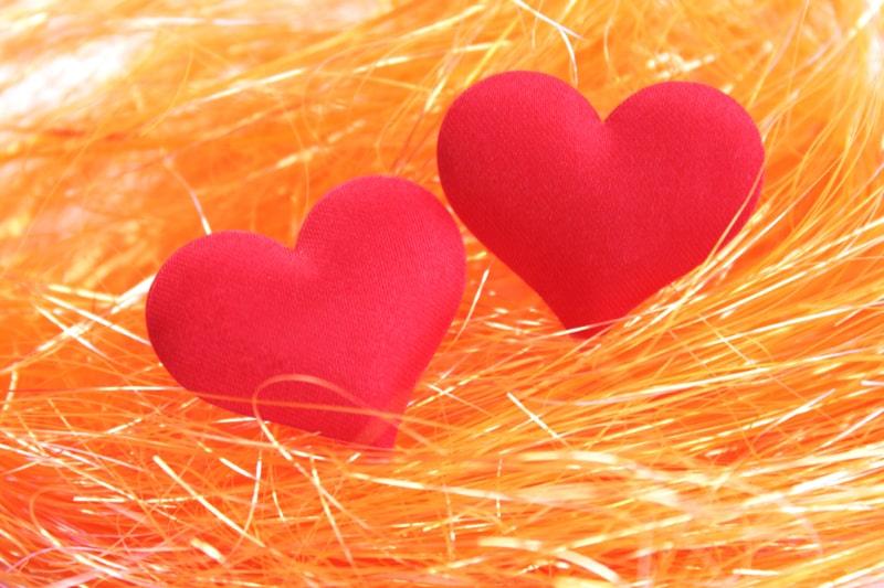 Das-Herzpaar-im-orangefarbenen-Nest-aus-den-Faden