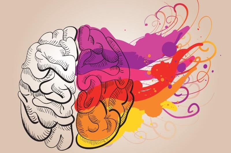 Konzept-Kreativitat-und-Gehirn