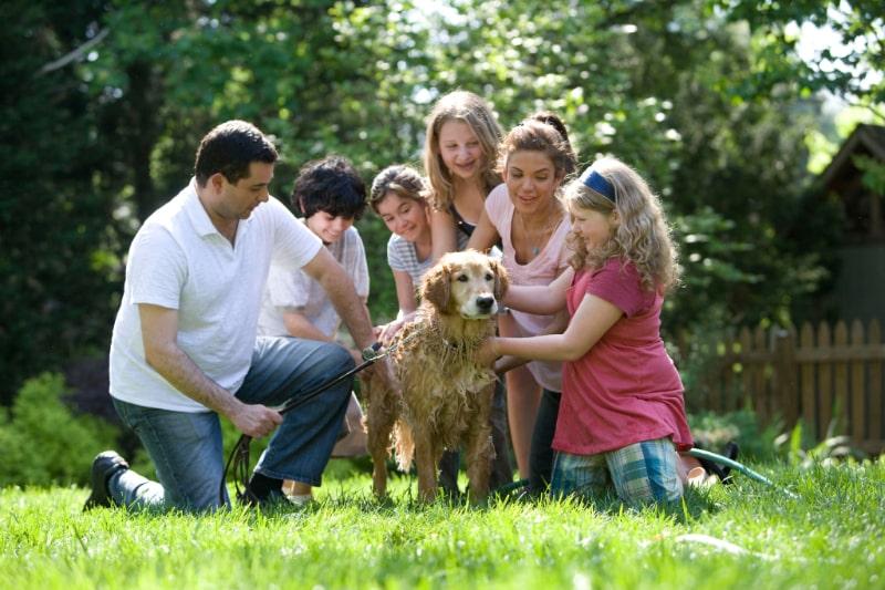 eine-familie-drausen-alle-stehen-um-einen-hund-herum
