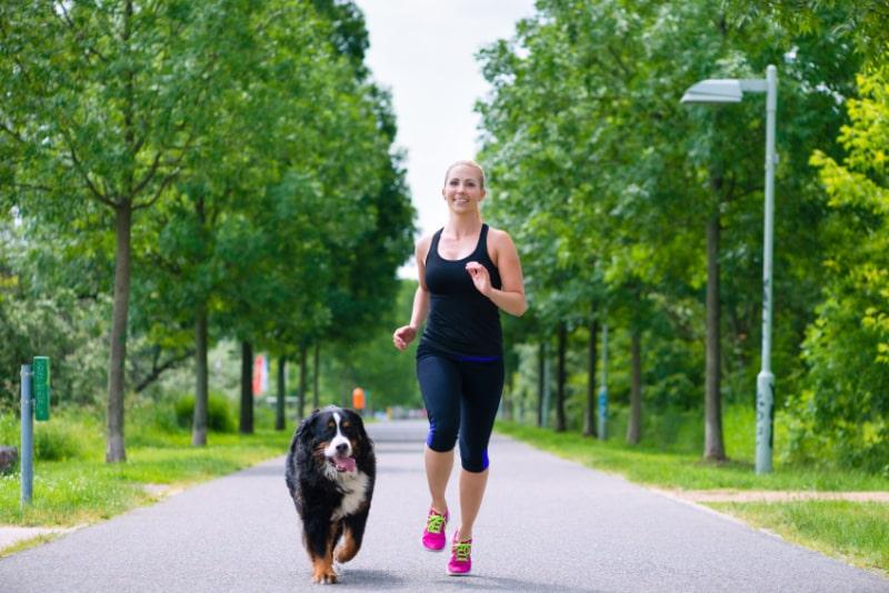 Junge-Frau-die-mit-Hund-im-Park-lauft