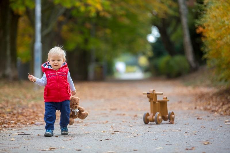 Kleiner-Kleinkindjunge-mit-Teddybar-Holzhundelaufrad-im-Herbstpark-an-einem-sonnigen-warmen-Tag-reiten-Freizeitaktivitaten-fur-Kinder-und-Gluckskonzept